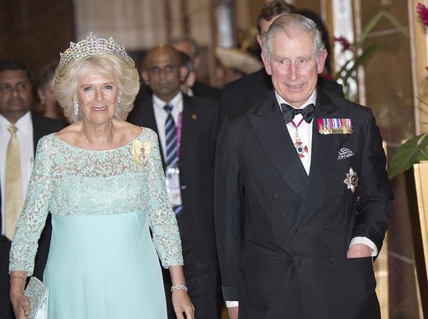 Фото №5 - Герцогиня Камилла: как она становится новой королевой сердец