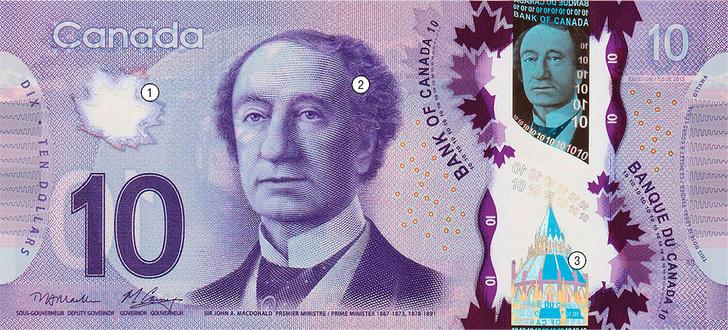 Фото №1 - Круговой обзор: канадский доллар