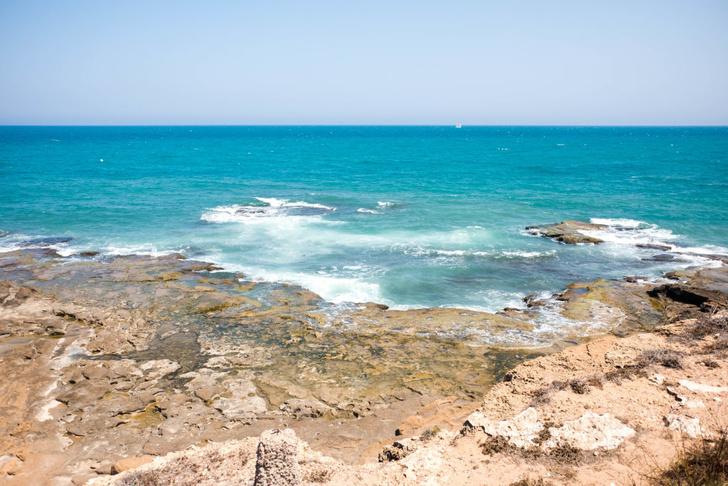 Фото №1 - Кислотность океана может достигнуть рекордных за миллионы лет значений