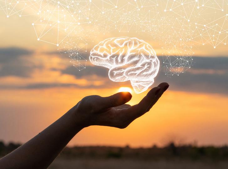 Фото №1 - Как повысить работоспособность мозга