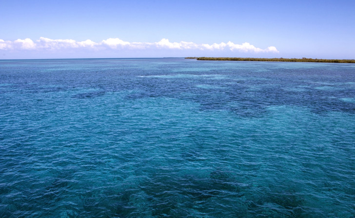 Фото №1 - Где находится архипелаг «Сады королевы»?