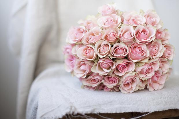 Фото №8 - Весы— роза, Рыбы— лотос: какой вы цветок по знаку зодиака