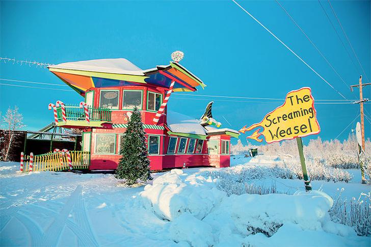 Фото №2 - Хозяин Аляски