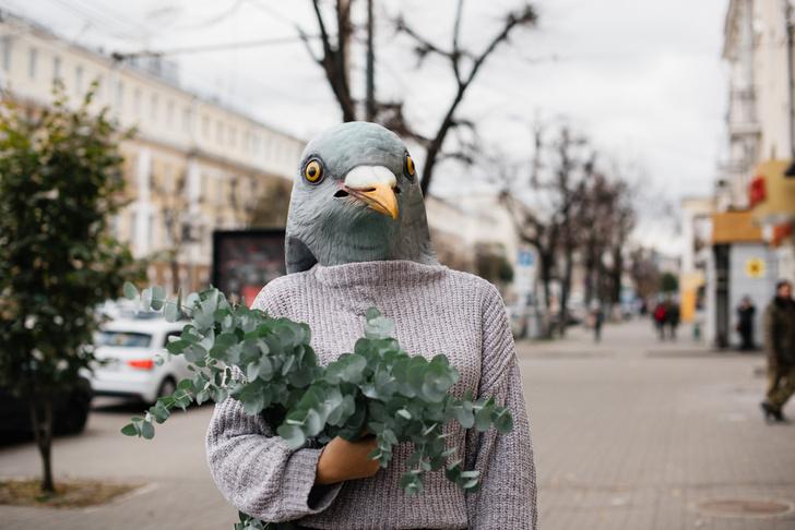 Фото №2 - Почему никто не видел птенцов голубей и как они выглядят