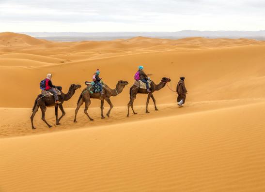 Фото №1 - Thierry Mugler предлагает выиграть поездку в Марокко