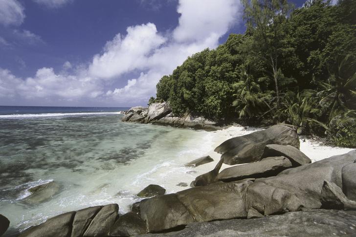 Фото №4 - Впадая в крайности: 10 самых необычных национальных парков на планете
