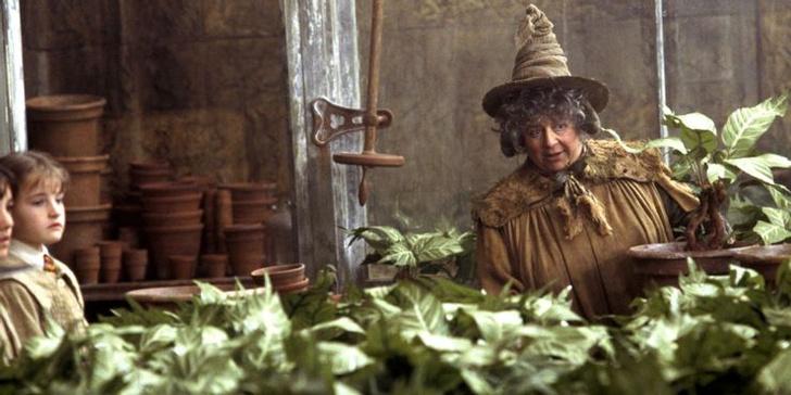 Фото №2 - «Хогвартс. Наследие»: 10 самых интересных фактов о новой игре по вселенной «Гарри Поттера» ✨