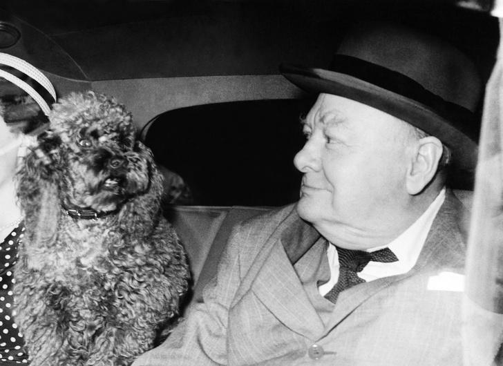 Фото №2 - 29 цитат про алкоголь, женщин, ад и большевиков от Уинстона Черчилля