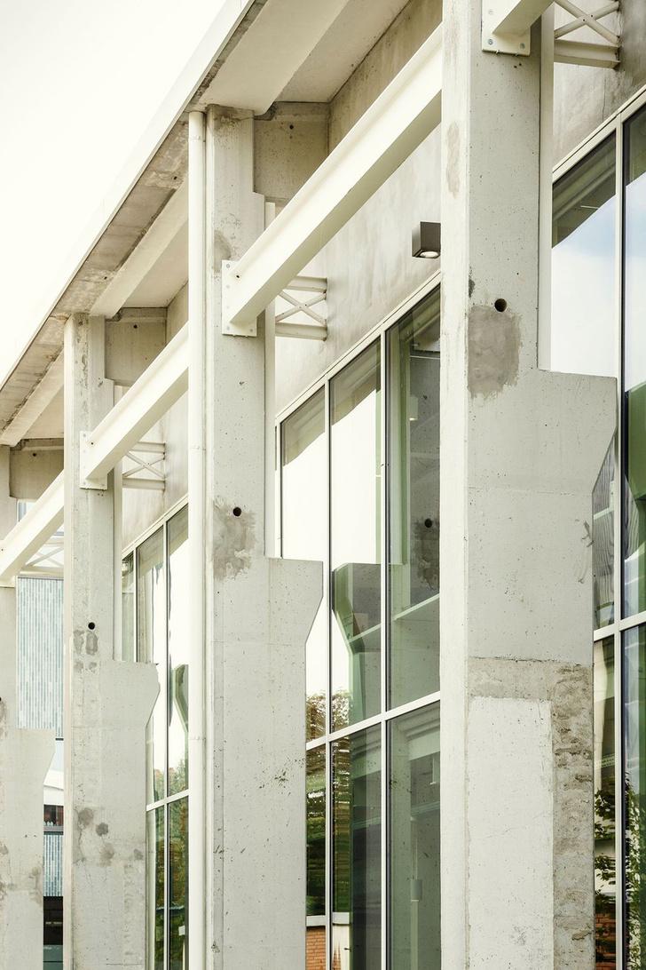 Фото №3 - Новая штаб-квартира Zambon по проекту Микеле де Лукки