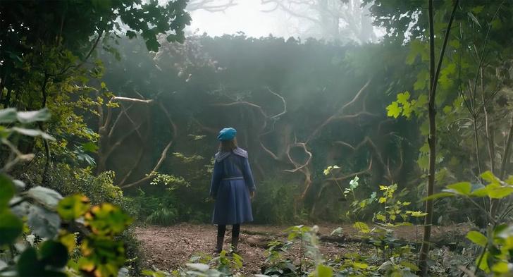 Фото №1 - MAXIM рецензирует «Таинственный сад»