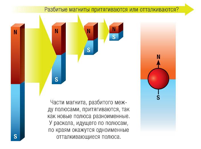 Фото №1 - Почему при разделении магнита всегда остаются два полюса?