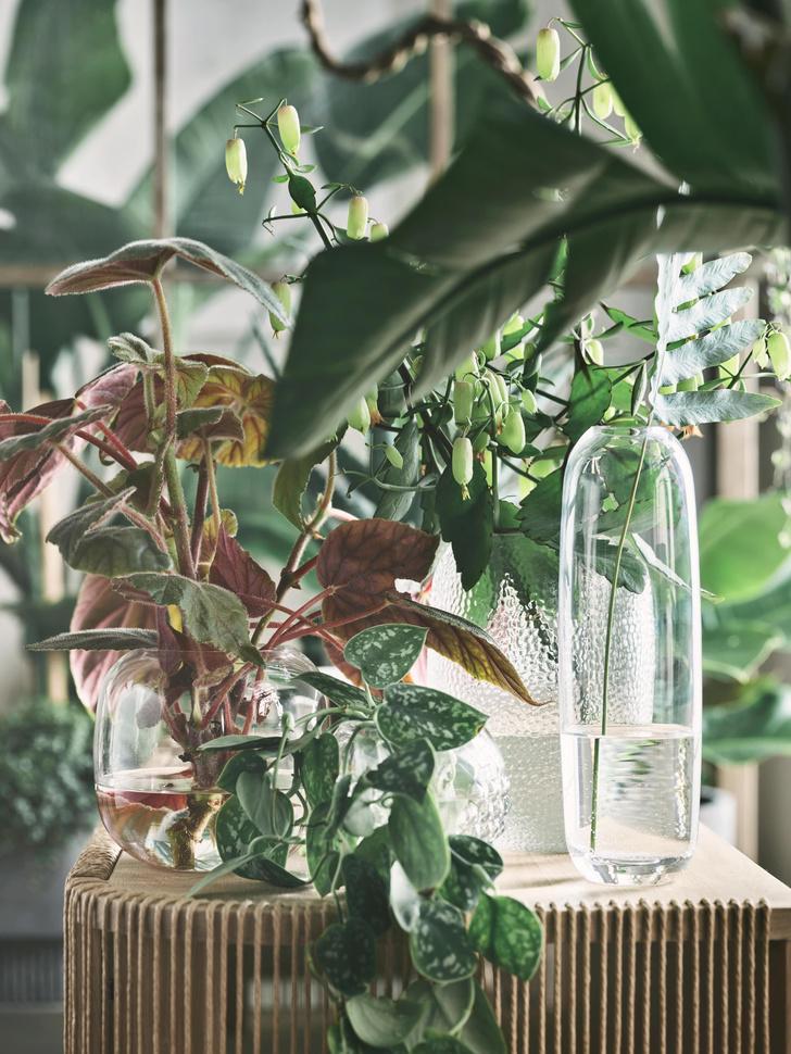 Фото №7 - Una: вазы-трансформеры Катерины Соколовой для марки Bolia