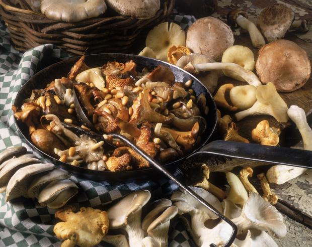 Фото №1 - Что будет, если есть грибы каждый день