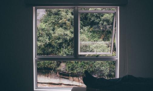 Фото №1 - Возможность любоваться природой из окна дома уменьшает тягу к вредным привычкам