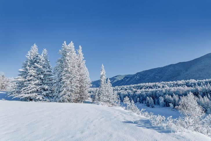 Фото №1 - РГО приглашает в «Снежный дозор»