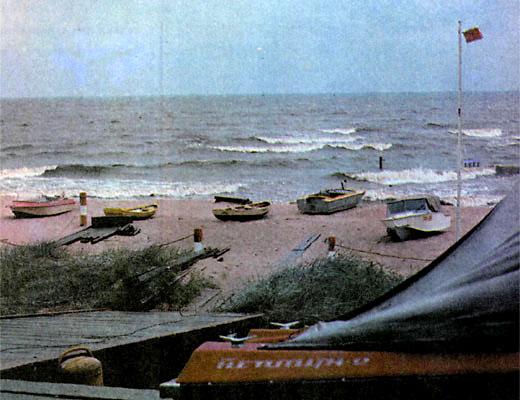 Фото №1 - Прирученные дюны