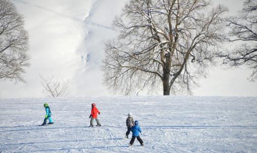 Фото №1 - В новогодние каникулы десятки петербуржцев получили травмы от петард, гололеда и ватрушек