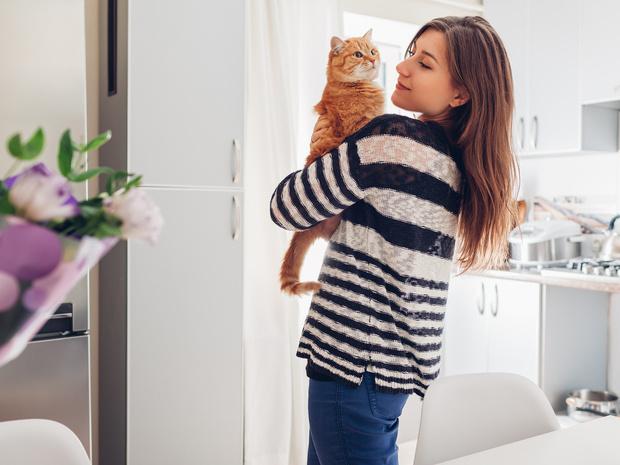 Фото №1 - 14 фактов о кошках, которые на самом деле ложные