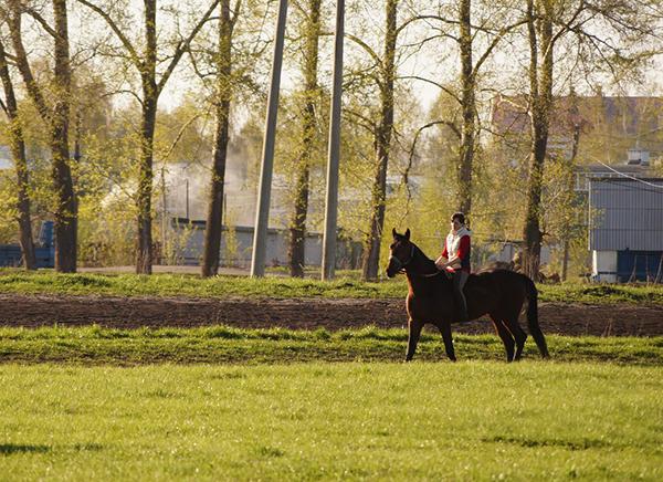 Фото №17 - Девушки на коне: самые романтичные наездницы Ульяновска