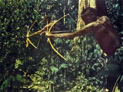 Фото №5 - Люди леса