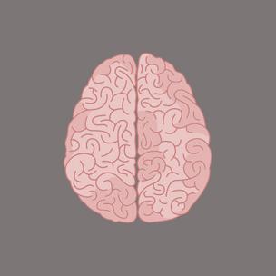 Фото №1 - Тест: Выбери мозги, а мы скажем, какая остроумная фраза опишет твои выходные