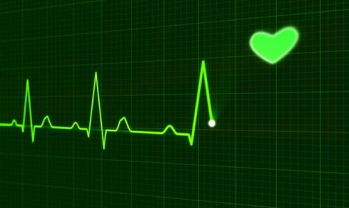 Фото №1 - Врач Центра Алмазова назвала неочевидные причины старения сердца и сосудов