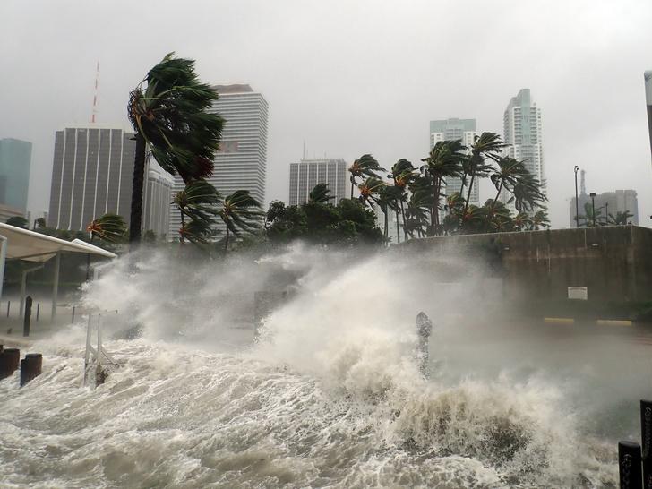 Фото №1 - Климатологи назвали главную причину возросшего числа ураганов