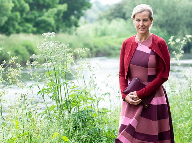 Фото №12 - Софи Уэссекская: тайная модница в королевской семье