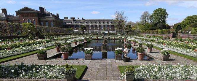 Фото №7 - Сад памяти Дианы: самая вдохновляющая причина попасть в Лондон