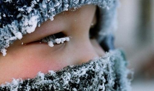 Фото №1 - МЧС советует петербуржцам в морозы не выходить из дома голодными