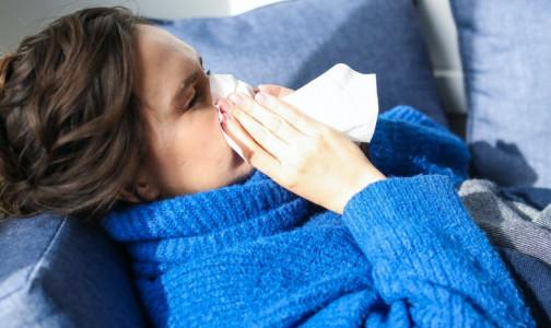 Фото №1 - От отита до менингита: что будет, если не лечить насморк