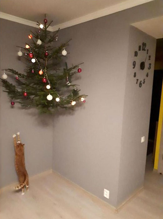 Фото №5 - Как защитить новогоднюю елку от кота: 7 самых хитрых способов с фотоинструкцией