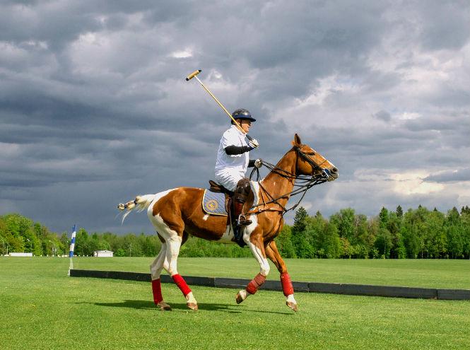 Фото №6 - Россия и Швейцария, спорт и искусство – Triumph Polo Cup