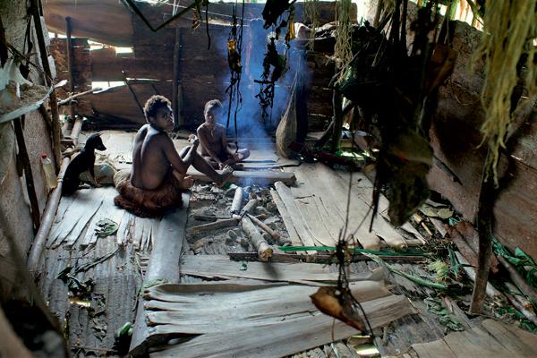Фото №3 - Высшее общество: индонезийское племя короваи