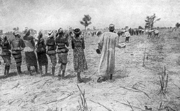 Фото №4 - Наследники древнего Мали