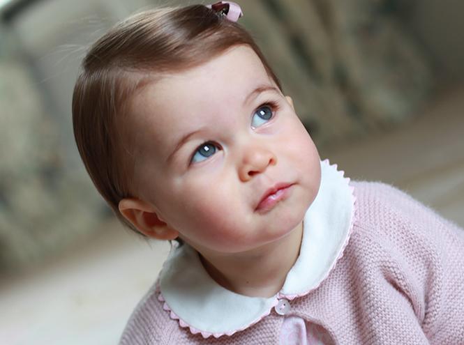 Фото №1 - Принцесса Шарлотта Кембриджская: первый год в фотографиях
