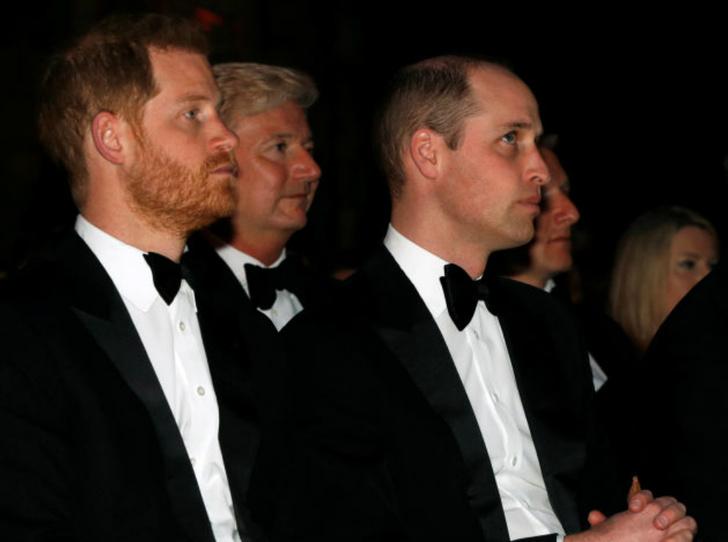 Фото №1 - Почему принцы Уильям и Гарри стали держаться на расстоянии