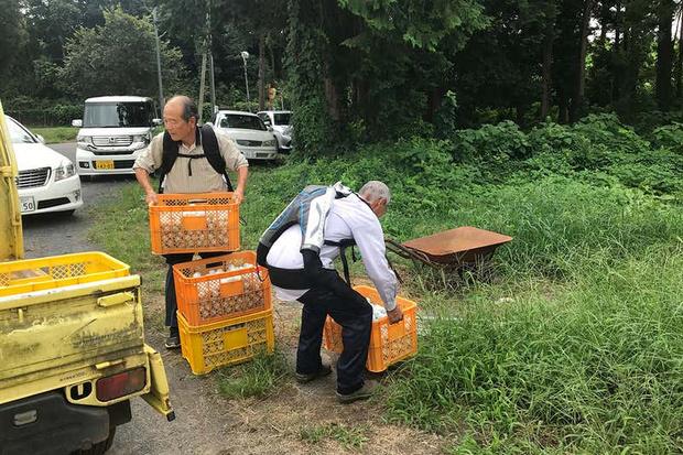 Фото №1 - Японские пенсионеры используют экзоскелеты, чтобы продолжать работать