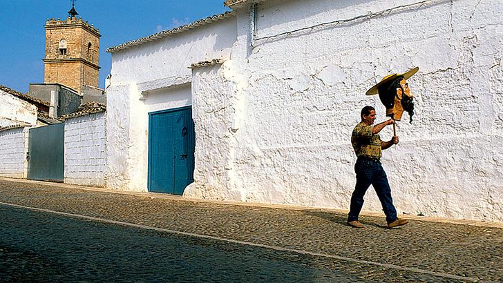 Фото №5 - Путь к даме сердца