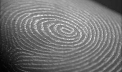 Фото №1 - Исследователи выяснили, зачем нужны узоры на пальцах