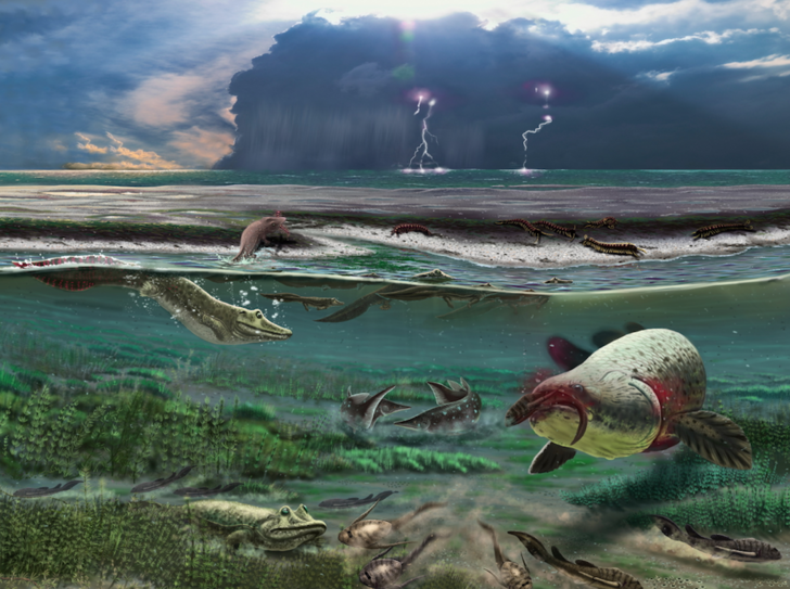 Фото №1 - В России обнаружили окаменелости предка всех наземных позвоночных