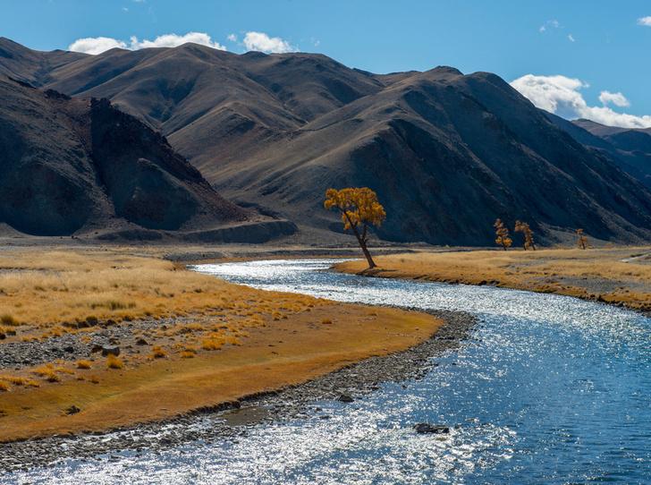 Фото №6 - Как восполнить энергию и красоту в горах Алтая