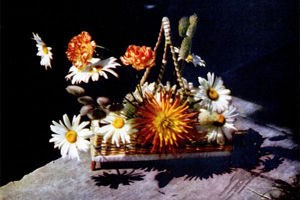 Фото №1 - Сочинение в цветах и листьях