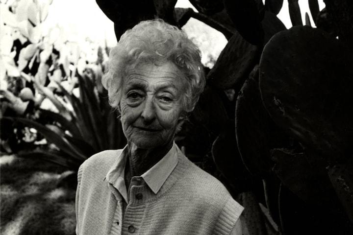 Фото №5 - Никогда не поздно: 7 всемирно известных писателей, дебютировавших в зрелом возрасте