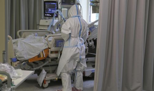 Фото №1 - Коронавирус проникает в больницы Петербурга. Спасет ли от него поголовное тестирование экстренных пациентов