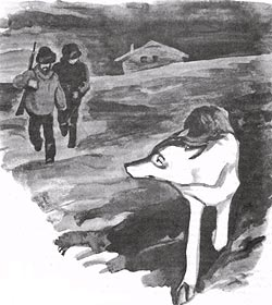 Фото №1 - Белый волк