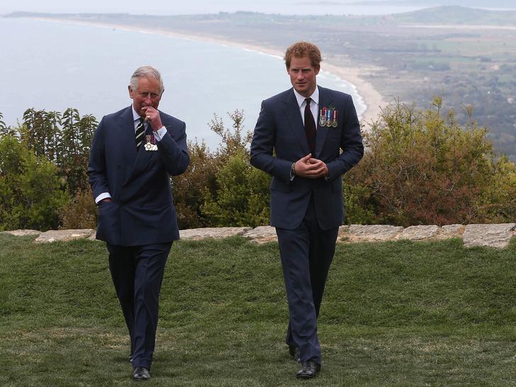 Фото №4 - Совсем не тиран: что Гарри говорил о Чарльзе до «Мегзита» и своего побега в Америку