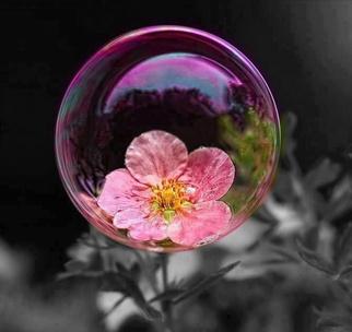 Фото №4 - Тест: Лопни мыльный пузырь, и мы опишем твое будущее в эмодзи