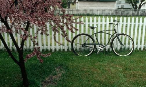 Фото №1 - Поездка на велосипеде может закончиться сердечным приступом