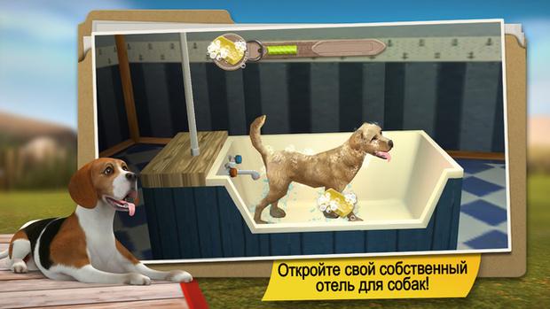DogHotel – Моя гостиница для собак приложение